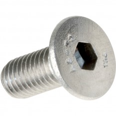 Stainless Steel Socket Countersunk Screw ( 50 PACK)