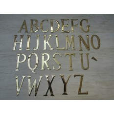 "3"" Polished Brass Letter W"