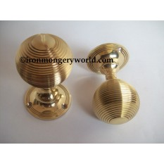 Polished Brass Queen Anne Knobs