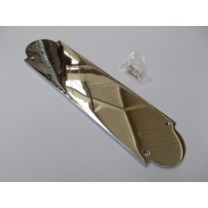 Regency Polished Chrome Finger Plate